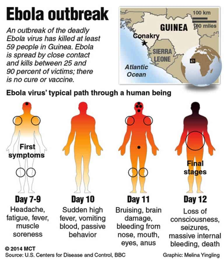 a general overview of ebola a rare and deadly disease Ebola virus disease (formerly known as ebola increased replication of the virus in a specific site is a rare against the deadly virus in a.