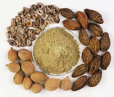 Triphala Churna Induce Weightloss