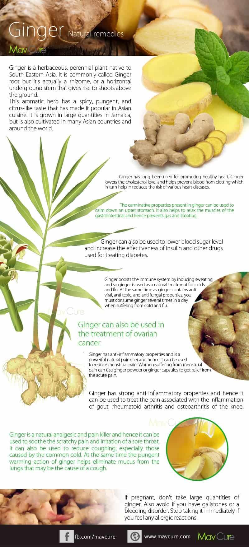 Ginger Juice Health Benefits Infographics