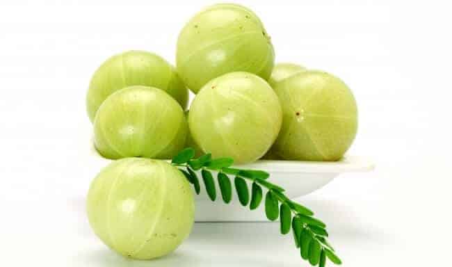 Indian Gooseberry(Amla)