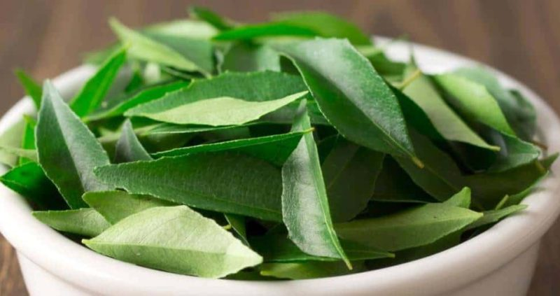 19 Health Benefits & Uses Of Curry Leaves That Will Blow Your Mind