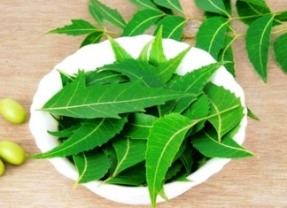 Why Should You Use Herbal Neem Clove Tooth Powder