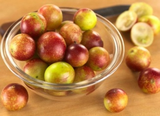 Health Benefits Of Camu Berry