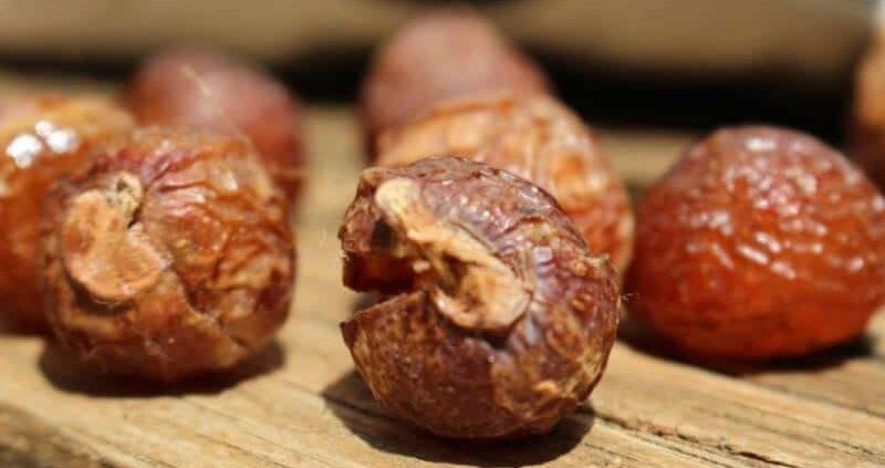 Health Benefits Of Soapnuts