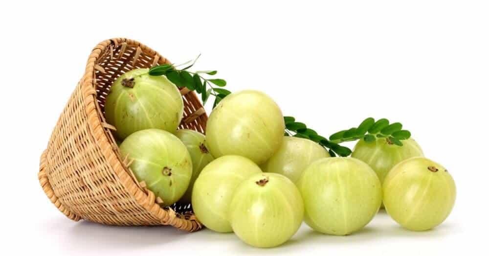 amla fruit healthy fruit muffins