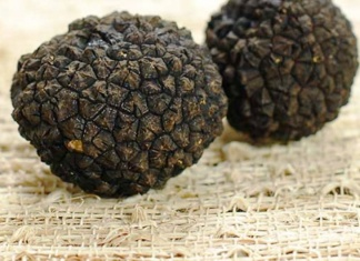 Health Benefits of Truffle Oil