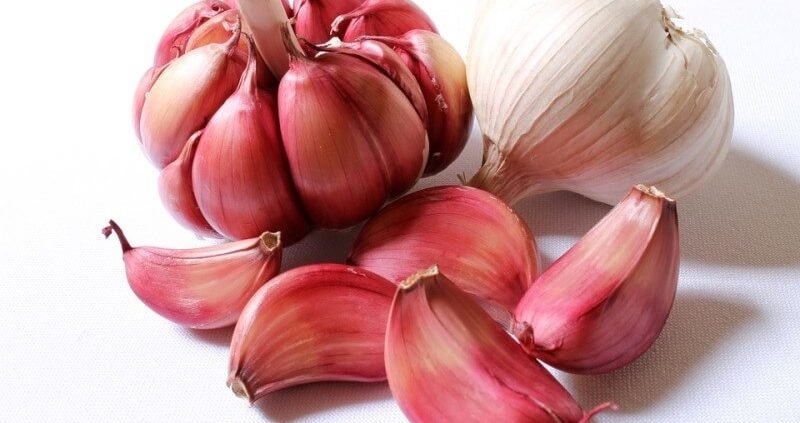 Garlic Allergy : Causes, Symptoms & Cure