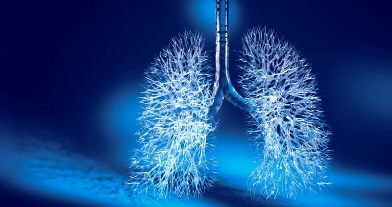 How To Purify Your Lungs In 3 Days Using Home Remedies?
