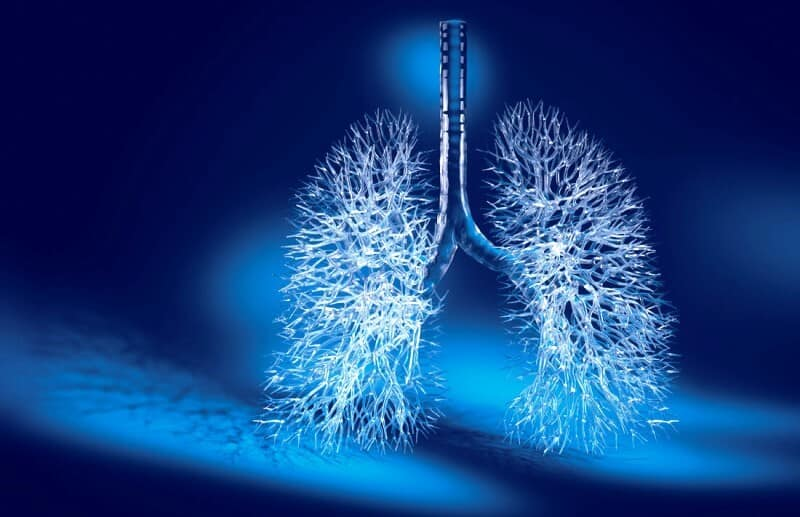 How To Purify Your Lungs In 3 Days Using Home Remedies