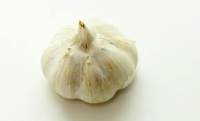 WHAT IS GARLIC ALLERGY