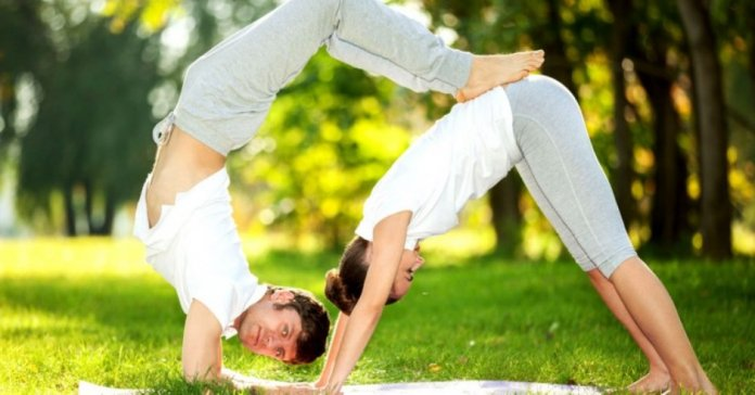 Yoga Vs Gym Exercises Which One Is Best For You