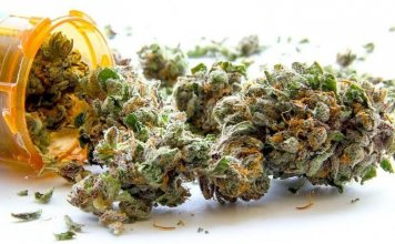 Medical Marijuana May Reduce The Need For Other Medicines, Study Says