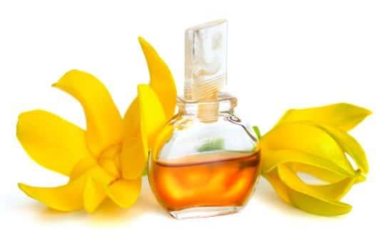 Ylang Essential Oil