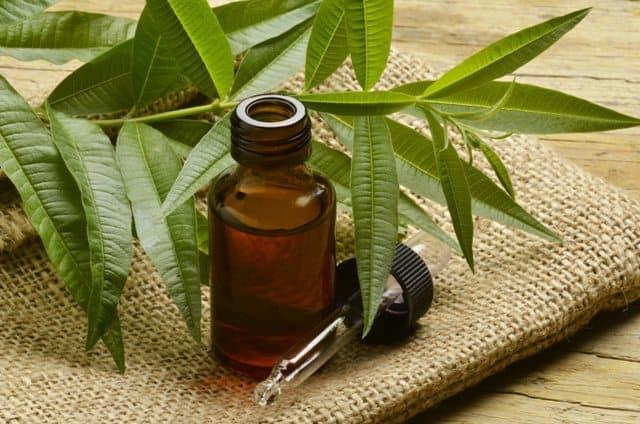 Tea tree oil for foot soak