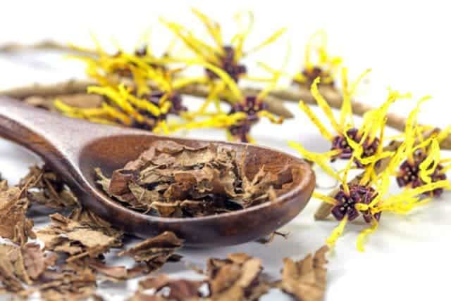 Witch hazel for hair