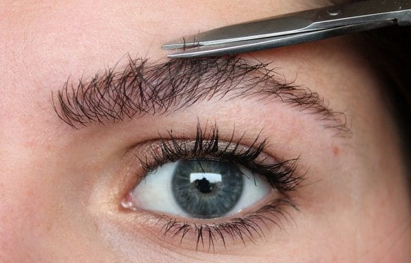 Can Eyebrows Be Regrown After Shaving