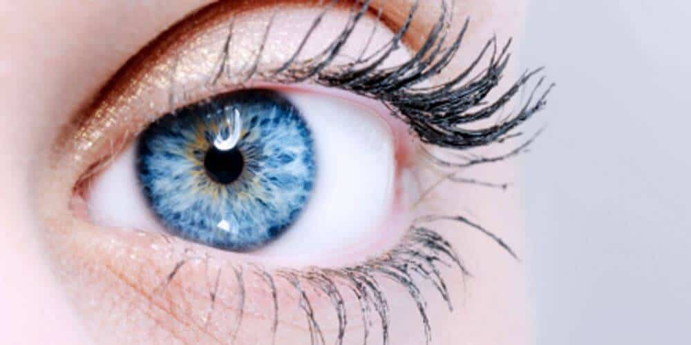 chemosis: causes,symptoms,diagnosis,treatment, Skeleton