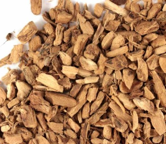 Calamus Root (Sweet Flag)Health Benefits,Uses,Side Effects