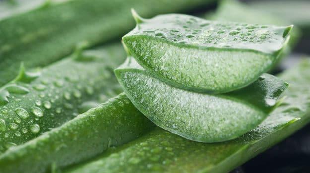 Aloe Vera To Remove Scars