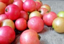 Aratilis (Kerson Fruit) Discover The Amazing Health Benefits