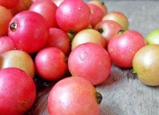 Aratilis (Kerson Fruit) Discover The Amazing Health Benefits