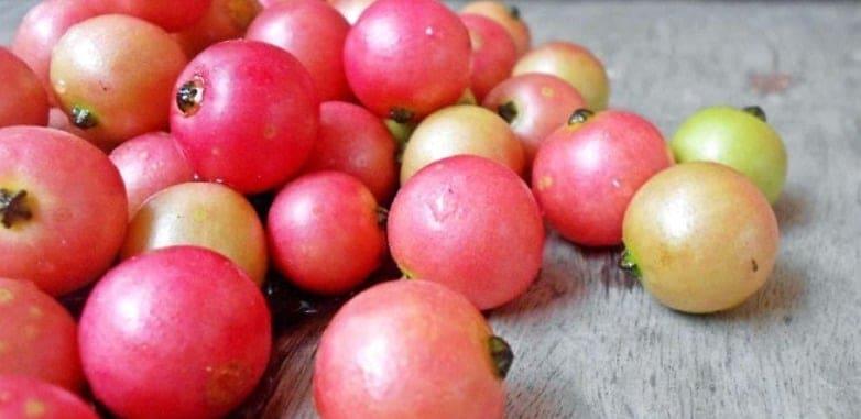18 Health Benefits Of Aratilis (Kerson Fruit) You Should Know