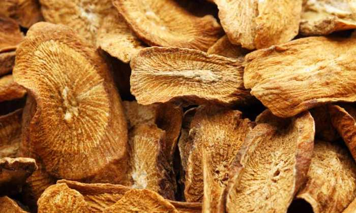 Burdock root for blood purification