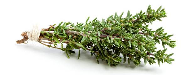 Health-Benefits-Of-Thyme