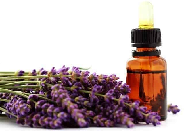 Lavender Oil Get Rid Anxiety Attack