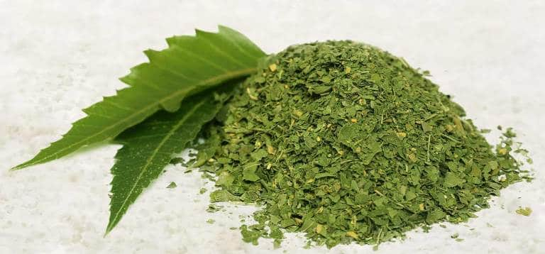 Neem for blood purification