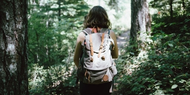 Take a Forest Walk Panic Attack Without Medication