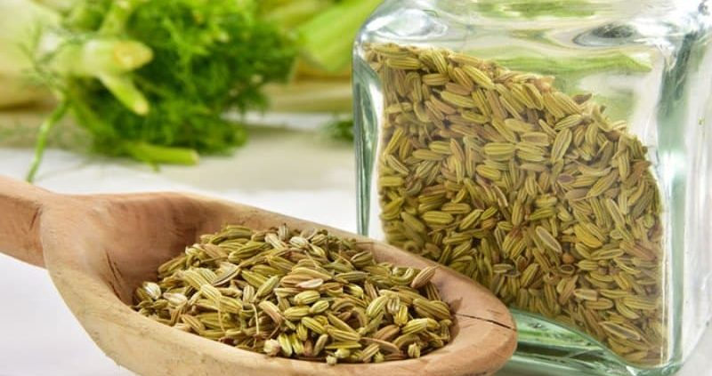 45 Proven Health Benefits Of Fennel Seeds