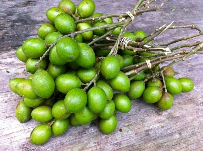 Amazing Health Benefits Of Quenepa