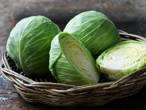 Cabbage for vitiligo
