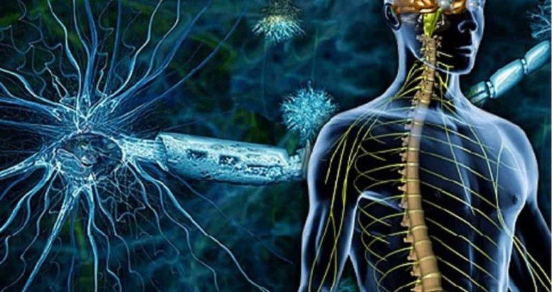 724.4 Lumbosacral Neuritis – Causes, Symptoms, Home Remedies