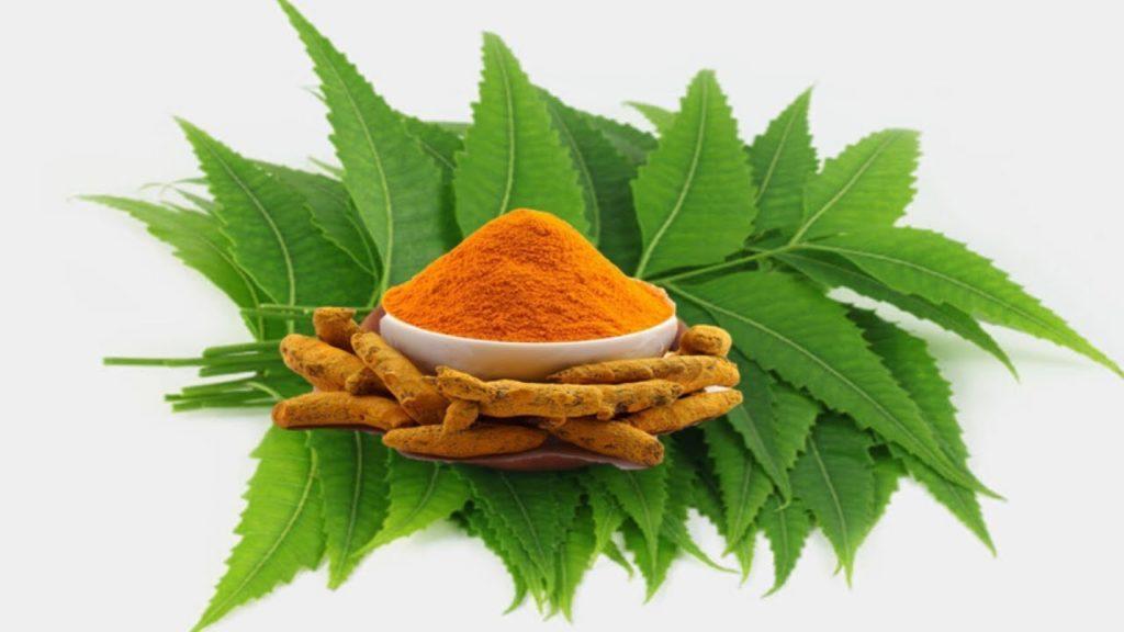 Turmeric and neem leaves