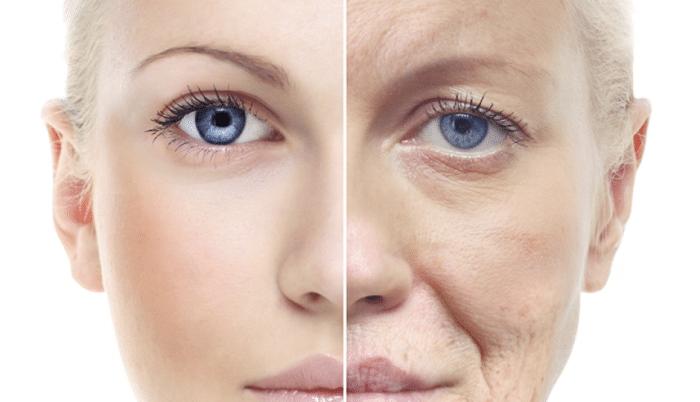 Anti-aging agent