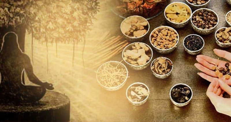Ayurveda 101: The Ultimate Guide To Live A Healthy Life