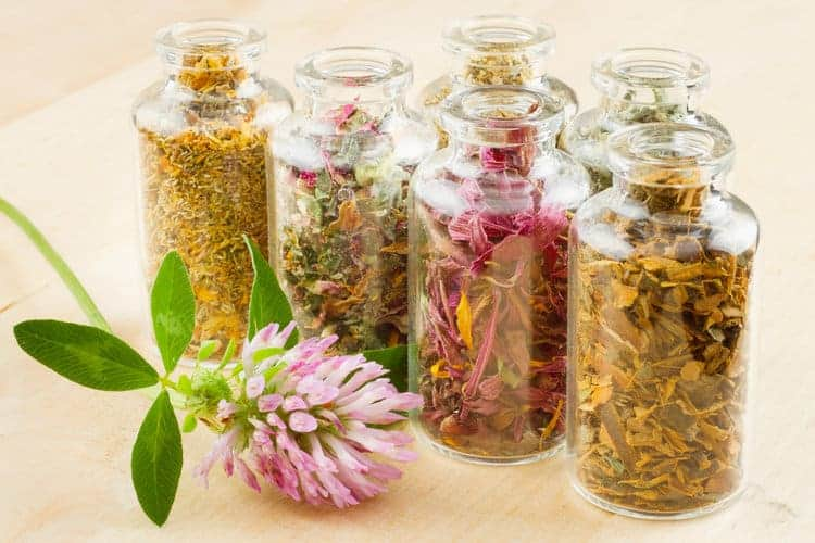 Herbal blends for vaginal steaming