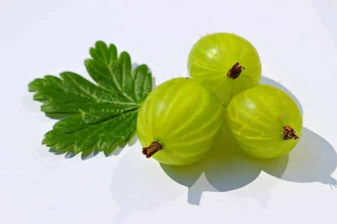Gooseberry for indigestion