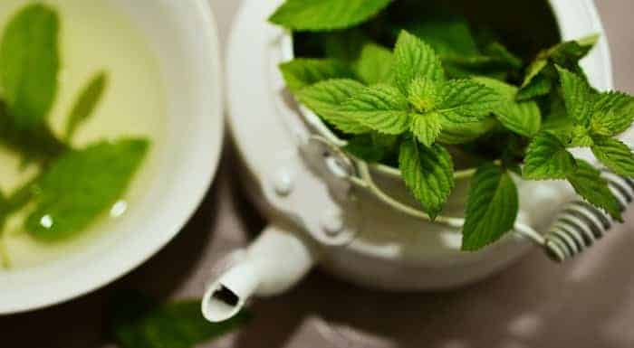 Peppermint for indigestion