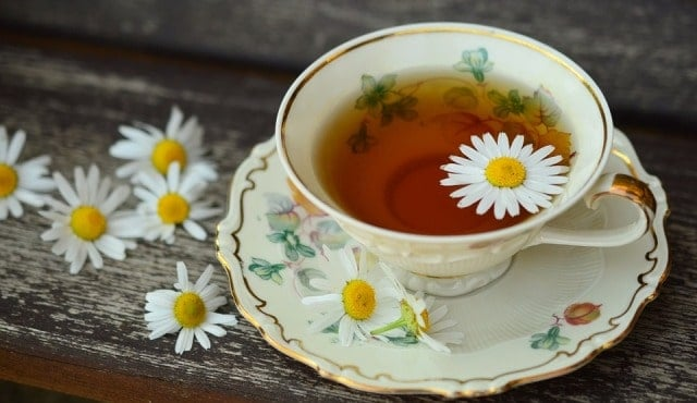 Chamomile Tea Compress To Heal Corneal