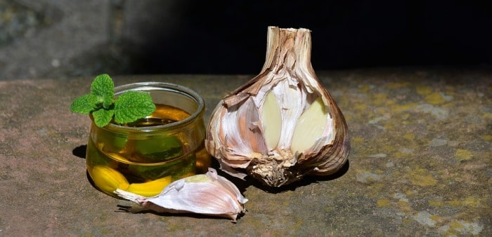 Garlic to cure a bone fracture