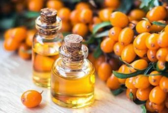 Sea Buckthorn Oil: Benefits, Classification, Nutritional value, Properties