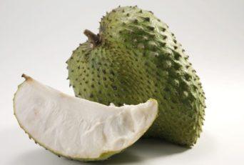 Best Supplement For Guanabana