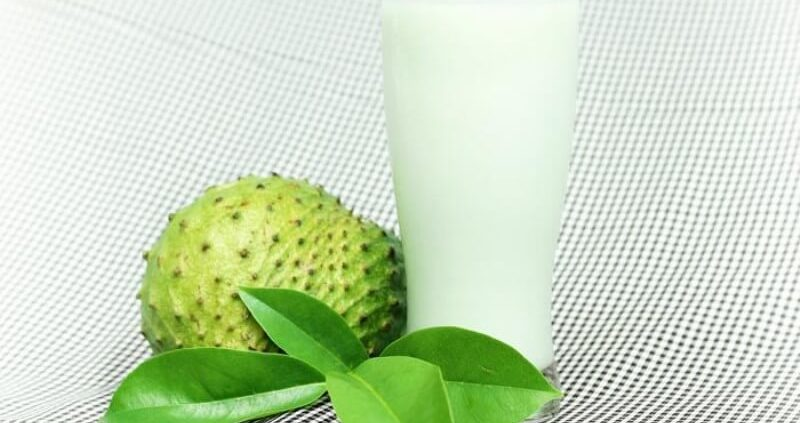 How To Make Soursop Juice For Cancer Treatment