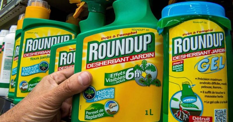5 Health Problems Linksed To Monsanto's Roundup