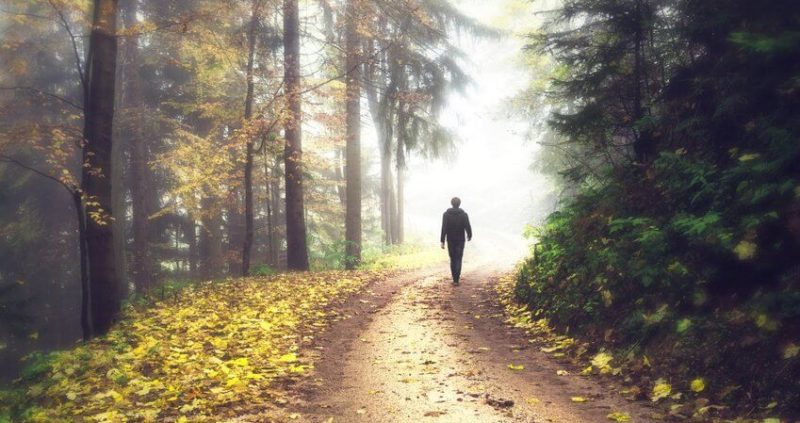 The Benefits of Taking a Walk in Nature