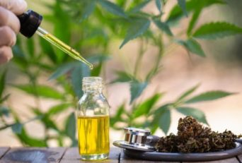Choosing The Right CBD Oil: What to Look For
